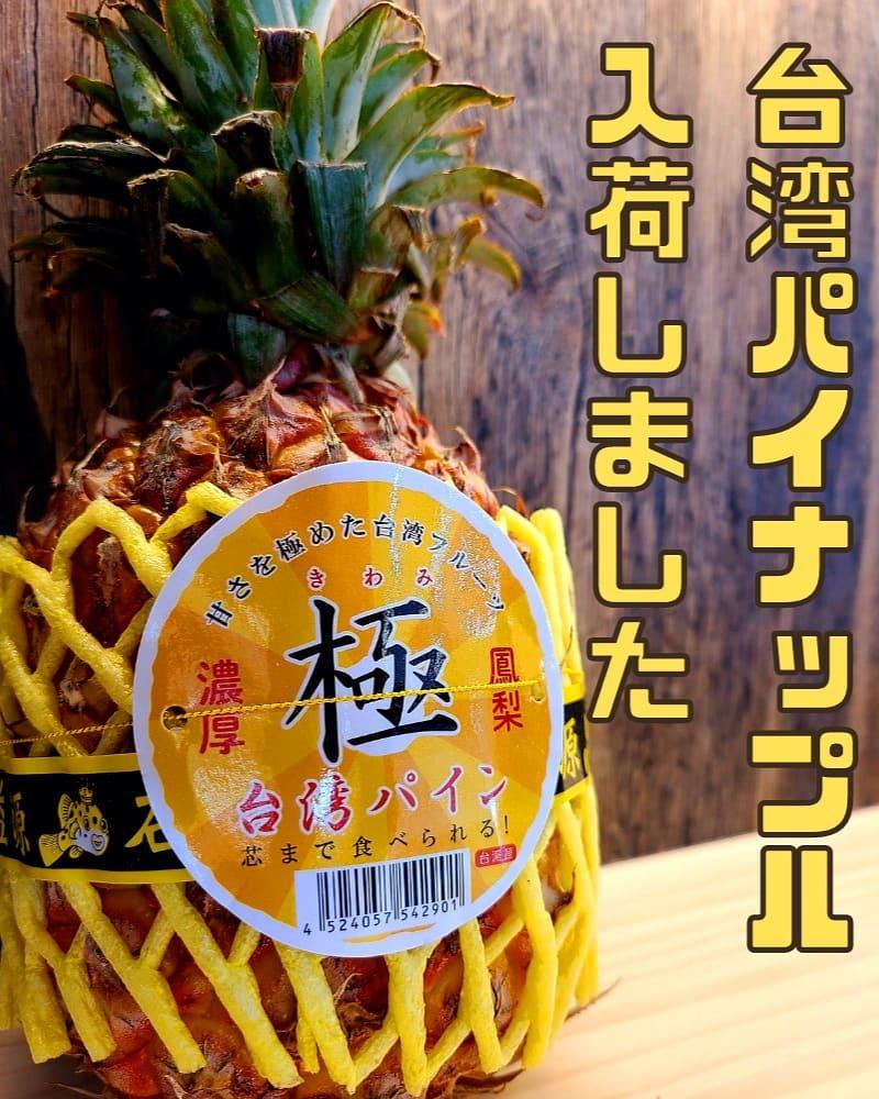 入荷情報  去年大人気でした台湾パイナップルが今年も入荷しました  酸味が少なくとても甘い特徴のパイナップルです 通常のパイナップルとは違い芯まで食べられます。 一度食べたら病みつきになる一品です